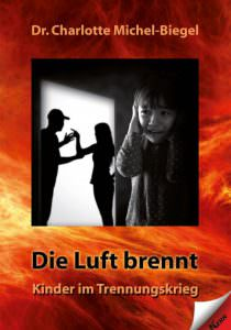 Cover Die Luft brennt